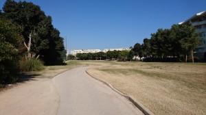 Alicante23.02.18_4